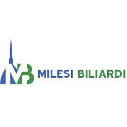 Milesi Biliardi - Videogiochi, flippers e biliardini - vendita al dettaglio e noleggio San Maurizio Canavese