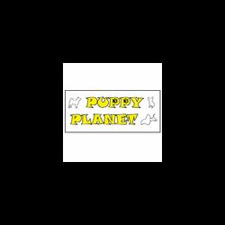 Puppy Planet - Animali domestici - toeletta Sedrina