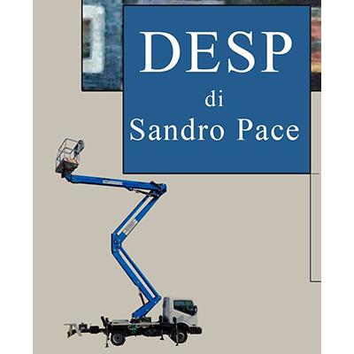 Noleggio Cestelli e Piattaforme Aeree Desp & C. di Sandro Pace - Gru - noleggio San Giovanni Galermo
