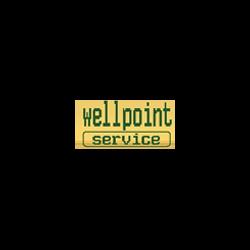 Wellpoint Service - Pompe - produzione Eraclea