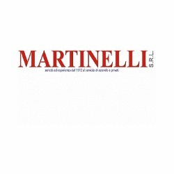 Martinelli - Utensileria e Macchine Utensili - Macchine utensili - attrezzature e accessori Modena