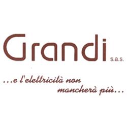 Grandi - Gruppi elettrogeni e di continuita' Castel San Pietro Terme
