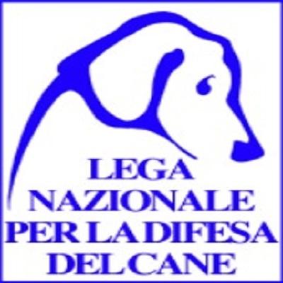 Canile di Bibiana - Lega Nazionale per La Difesa del Cane - Associazioni di volontariato e di solidarieta' Bibiana