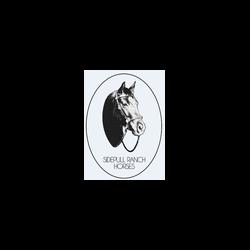 A.S.D. Sidepull Ranch Horses - Sport impianti e corsi - equitazione San Salvatore Monferrato