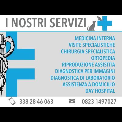Ambulatorio veterinario San Prisco vet - Medici specialisti - chirurgia generale San Prisco
