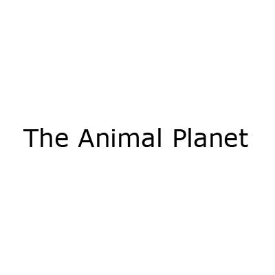 The Animal Planet - Animali domestici, articoli ed alimenti - vendita al dettaglio Atena Lucana