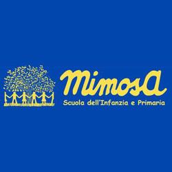 Scuola Bilingue D'Infanzia e Primaria Mimosa - scuole primarie private Lucca