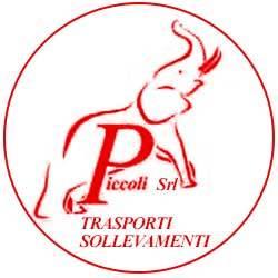 Piccoli - Autogru - noleggio Roma