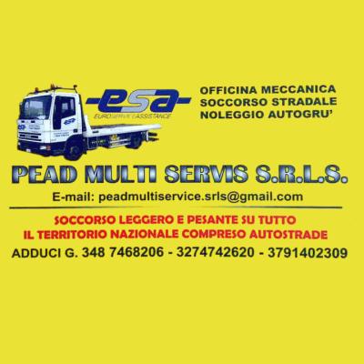 Pead Multi Servis