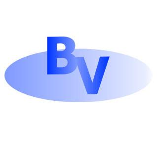 B.V. S.a.s - Parafulmini Milano