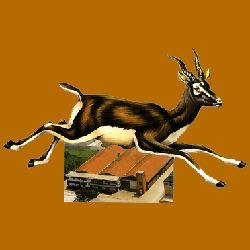 Nuova Antilope - Concerie e tintorie cuoi e pellami San Miniato