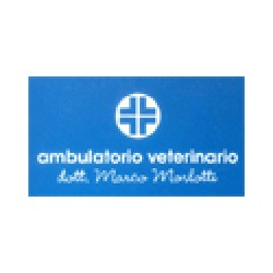 Marco Morlotti Ambulatorio Veterinario