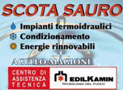Scota Sauro