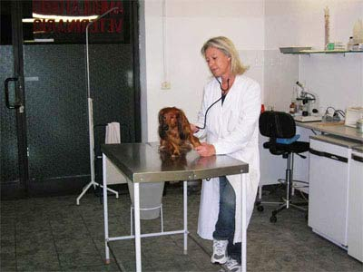 Ambulatorio Veterinario San Prospero