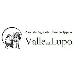 Centro Ippico Maneggio Valle del lupo - Sport impianti e corsi - equitazione San Giovanni Teatino