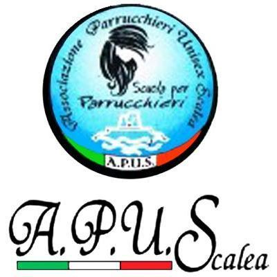 Centro di Formazione Professionale A.P.U.S. - Scuole di orientamento, formazione e addestramento professionale Scalea