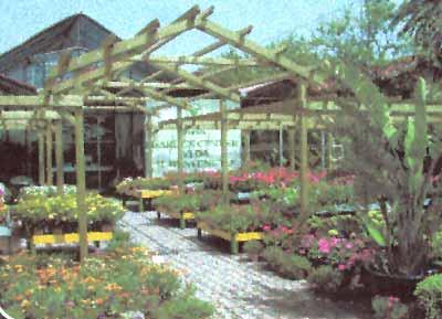 Vivai Rosso Antonio : Vivai piante e fiori in provincia di messina paginegialle