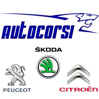 Autoriparazioni Corsi Peugeot Citroen - Elettrauto - officine riparazione Novara