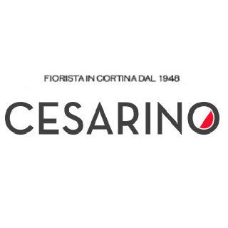 Fiorista Cesarino Sas