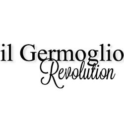 Il Germoglio Revolution - Abbigliamento - vendita al dettaglio Alba