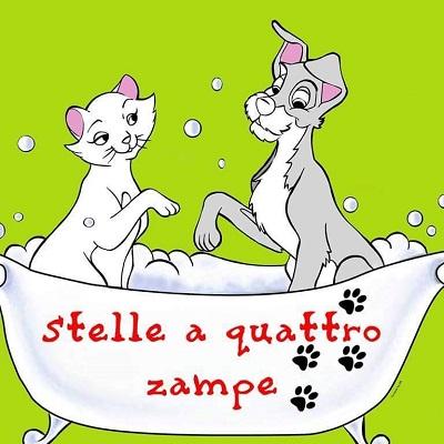 Stelle a 4 Zampe - Animali domestici, articoli ed alimenti - vendita al dettaglio Nicastro