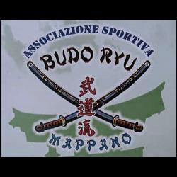 Associazione Sportiva Dilettantistica Budo Ryu Mappano - Sport - associazioni e federazioni Mappano