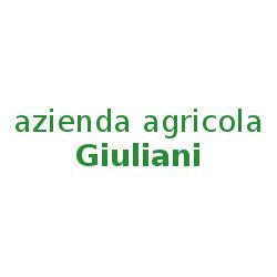 Azienda Agricola Giuliani - Marmellate e confetture Alanno