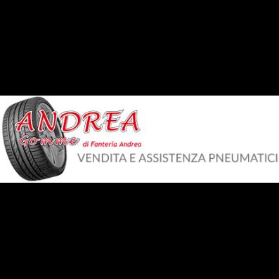 Gommista Andrea Gomme Big - Pneumatici - commercio e riparazione Calcinaia