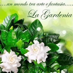 Fioraio La Gardenia - Fiori e piante - vendita al dettaglio Neviano
