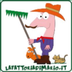 La Fattoria di Mario - Macchine agricole - accessori e parti Abano Terme