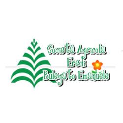 Vivai Bulegato Samuele - Vivai piante e fiori Mogliano Veneto