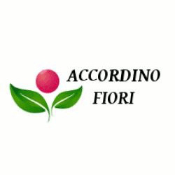 Accordino Fiori - Fiori e piante - vendita al dettaglio Gioiosa Marea