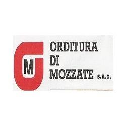 Orditura di Mozzate - Filati - produzione e ingrosso Mozzate