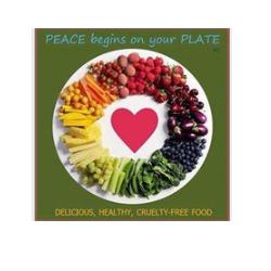 Bio...Logico - Alimenti dietetici e macrobiotici - vendita al dettaglio San Casciano In Val Di Pesa