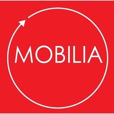 Mobilia - Falegnameria - Arredamenti su Misura - Falegnami Stradella