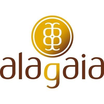 Alagaia - Uffici arredati e servizi Trento