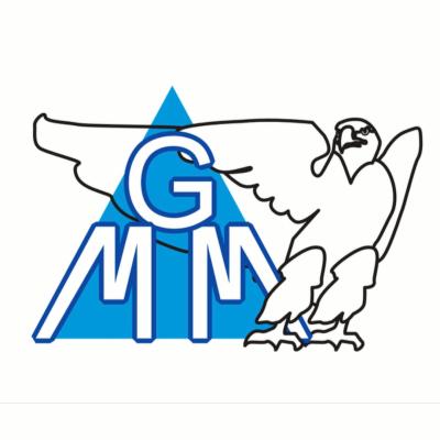 Mgm di Molaro Michele Servizi Sicurezza - Fiduciari - Vigilanza e sorveglianza Mestre