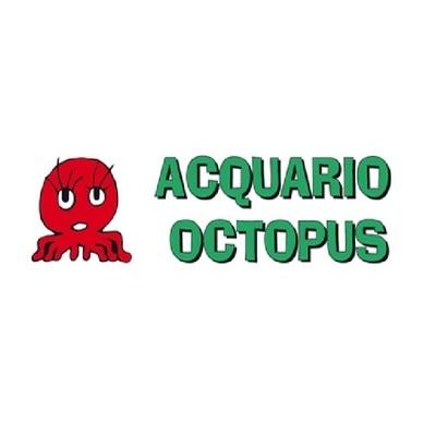 Acquario Octopus - Animali domestici, articoli ed alimenti - vendita al dettaglio Quart
