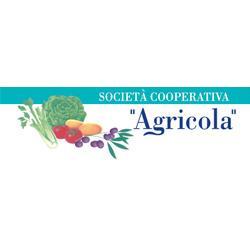 Società Cooperativa Agricola - Agricoltura - attrezzi, prodotti e forniture Polignano A Mare