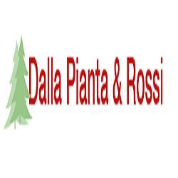 Dalla Pianta & Rossi Vivaio e Piante da Giardino - Vivai piante e fiori Forli'