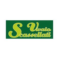 Vivaio Scassellati - Vivai piante e fiori Gualdo Tadino