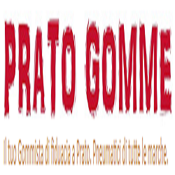 Prato Gomme - Pneumatici - commercio e riparazione Prato