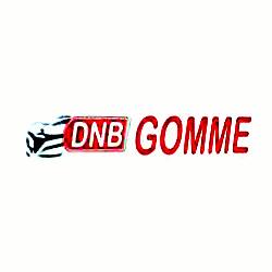 Dnb Gomme - Pneumatici - commercio e riparazione Rosate