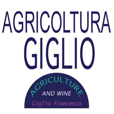 Agricoltura Giglio - Zootecnia - prodotti San Felice A Cancello