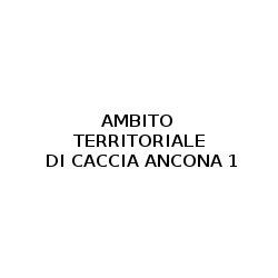 Ambito Territoriale di Caccia Ancona 1 - Sport - associazioni e federazioni Arcevia