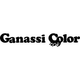 Ganassi Color - Colori, vernici e smalti - vendita al dettaglio Montecchio Emilia