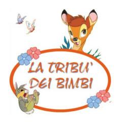 Asilo Nido la Tribù Dei Bimbi
