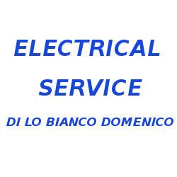 Electrical Service - Vigilanza e sorveglianza Vibo Valentia