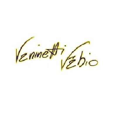 Autofficina Vaninetti Fabio - Autofficine e centri assistenza Regoledo
