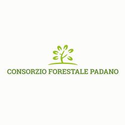 Consorzio Forestale Padano Societa' Agricola Cooperativa Consortile - Consorzi Casalmaggiore